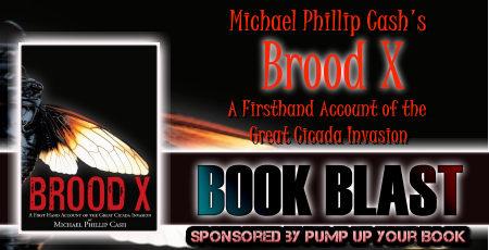 Brood X banner