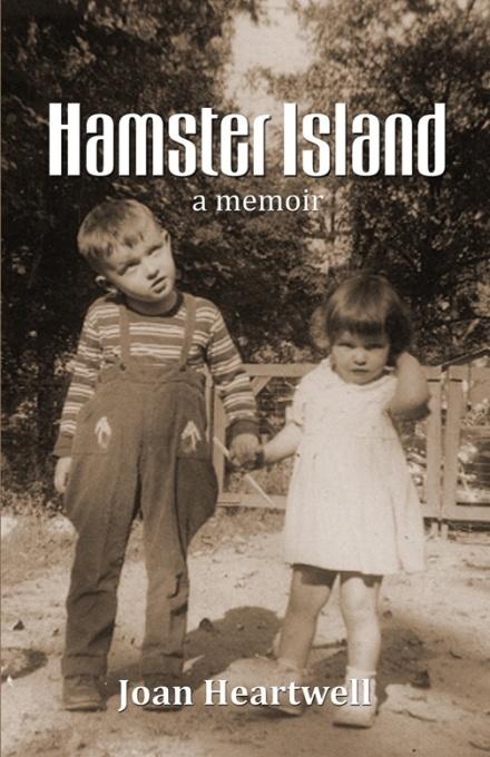 HamsterIsland_med